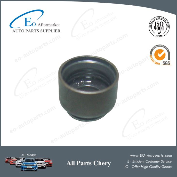 Cylinder Head Oil Seal 481H-1007020 for Chery T11 / Tiggo / MVM X33