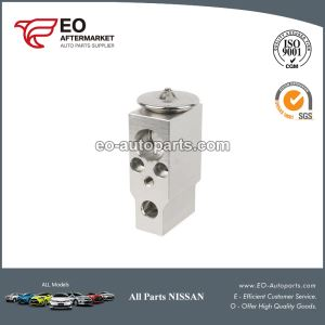 Nissan Pathfinder Expansion Valve
