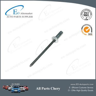 Rivets for Chery B11 and Eastar Body Luster B11-5300603