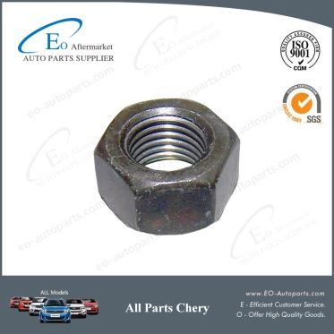 Standardized Parts Safty Belt Nuts for Chery B11 and Eastar B11-8212057