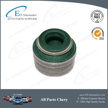 Chery Parts Valve Stem Oil Seal 481H-1007020 for Chery S12 Kimo Arauca