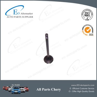 Manufacturer Intake Valve Exhaust 473H-1007011BA for Chery S18D Indis