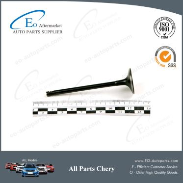 High Quality Intake Valve 473H-1007011BA for Chery S21/QQ6/Speranza A213/Jaggi