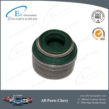 Best Quality Valve Oil Seal 481H-1007020 for Chery Skin M12 Cielo J3
