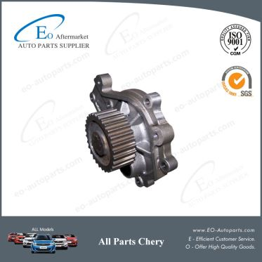 Brand New Parts Water Pump 481H-1307010 For Chery A21 A5 Fora MVM 520